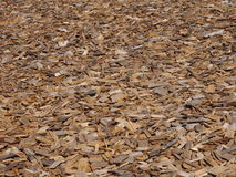 Wood chips. Background with wood chips laying on the ground Royalty Free Stock Images