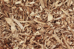 Wood chips background Stock Images