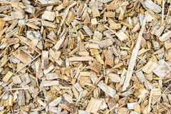 Wood chips Stock Image
