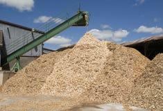 Wood-chips de derramamento Imagens de Stock Royalty Free