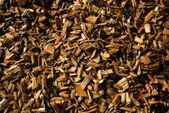 Wood Chips Flakes Chunks Pieces Brown guld- solskengarnering P royaltyfria foton