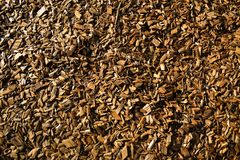 Wood Chips Flakes Chunks Pieces Brown guld- solskengarnering P royaltyfria foton