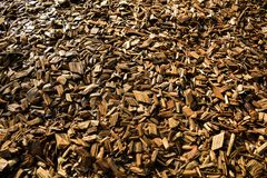 Wood Chips Flakes Chunks Pieces Brown guld- solskengarnering P fotografering för bildbyråer