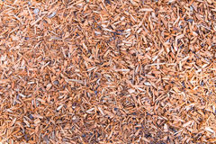 Wood chips on ground as background Royalty Free Stock Photo