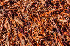 Wood chips, mulch or beauty bark Royalty Free Stock Image