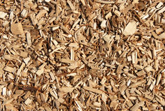Wood chips mulch texture Royalty Free Stock Photography