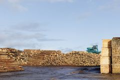 Wood chips pellets chopped wooden logs and stacked wooden pallets for biomass fuel at sawmill. Uk stock photography