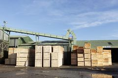 Wood chips pellets chopped wooden logs and stacked wooden pallets for biomass fuel at sawmill. Uk royalty free stock image