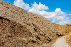 Wood chips. Pile of wood chips at biomass co-generation plant at the foreground in focus with beautiful blue sky in the background out of focus royalty free stock image