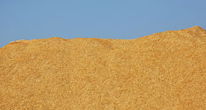 Wood Chips Pile Blue Sky Royalty Free Stock Images