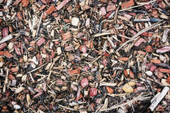 Wood chips or scrap background. Woodworking industry Royalty Free Stock Photo