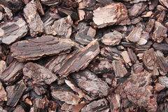 Wood Chips. Texture Background Details Stock Images