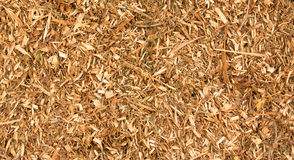 Wood CHips Texture. Wood chips with a nice natural warm colored texture Stock Photos