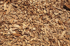 Wood chips texture, wooden biomass background Stock Images