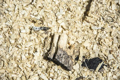 Wood chips Royalty Free Stock Photos
