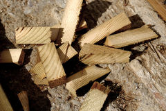 Wood chips. Wooden chips lay over the cement outdoor Stock Images