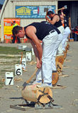 Wood Chopping at the 2012 Canterbury A&P Show Stock Images