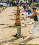 Wood chopping competition starting Stock Photo