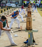 Wood chopping competition Royalty Free Stock Photo