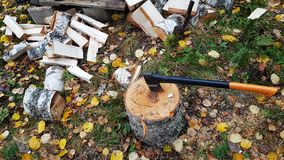 Hatchet sticking out of a log. Wood chopping and hatchet sticking out of a log Stock Photos