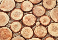 Wood circles with annual rings. Annual wood circles - pieces of wood with annual rings Royalty Free Stock Image