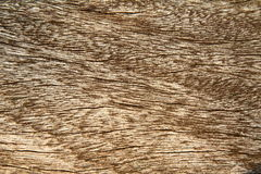 Wood in close up Stock Image