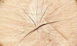 Wood Close Up Royalty Free Stock Photos