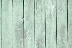 Free Wood Color Mint Stock Photos - 46731723