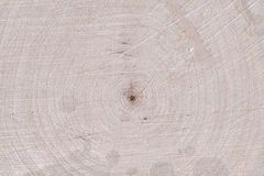 Wood core texture. Big piece of wood with highly detailed texture of central core Royalty Free Stock Images