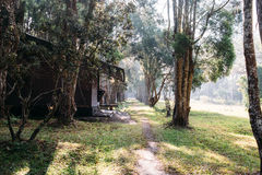Wood cottage. At Phu kradung park, Thailand Royalty Free Stock Photography