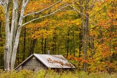 Wood cottage surrounded by fall color trees. Wooden cottage with chimney surrounded by fall color trees royalty free stock image