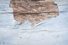 Wood cracks colour textured background for design and all inspirations creative royalty free stock photos