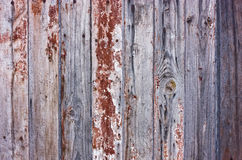 Wood cracky texture Stock Photo