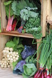 Wood crates filled with fresh picked vegetables. Wooden crates filled with fresh-picked vegetables at local farmers market Royalty Free Stock Photo
