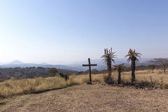 Wood Cross on Hilltop with Three Aloe Plants Depicting Crucifixi Royalty Free Stock Image