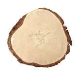 Wood cross section. Circular wood cross section with curved lines showing growth Royalty Free Stock Photos