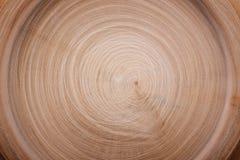 Wood cut circles texture Stock Image
