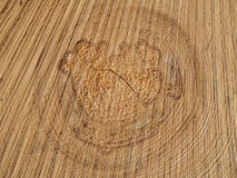 Wood cut concentric texture, wooden background Royalty Free Stock Photo