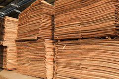 Wood cut into pieces Royalty Free Stock Image