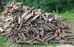 Wood cut for use as ecological heating Stock Photos
