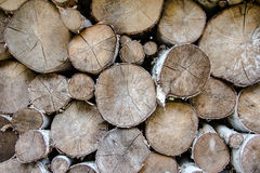 Wood cut for winter time Royalty Free Stock Images