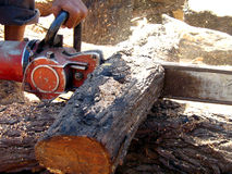 Wood cutting Royalty Free Stock Image