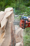 Wood cutting with chain saw Stock Images