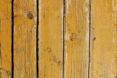 Wood dörrtextur arkivfoto