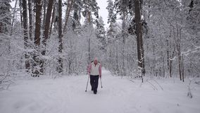 Wood. Day winter forest. The elderly woman on walk. The  aged is engaged in the health. The pensioner trains a fas stock footage