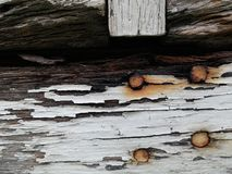 Wood decay Royalty Free Stock Image