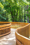 Wood deck path Stock Photos