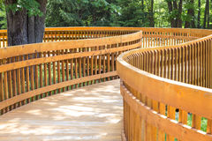 Wood deck path Royalty Free Stock Photo