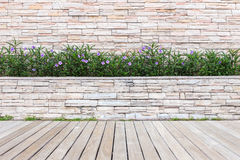 Wood decking or flooring and plant in garden decorative Stock Photography