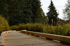 Wood decking pathway Stock Photos